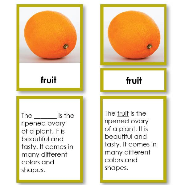 Parts of a Fruit, Classified Five Part Cards: