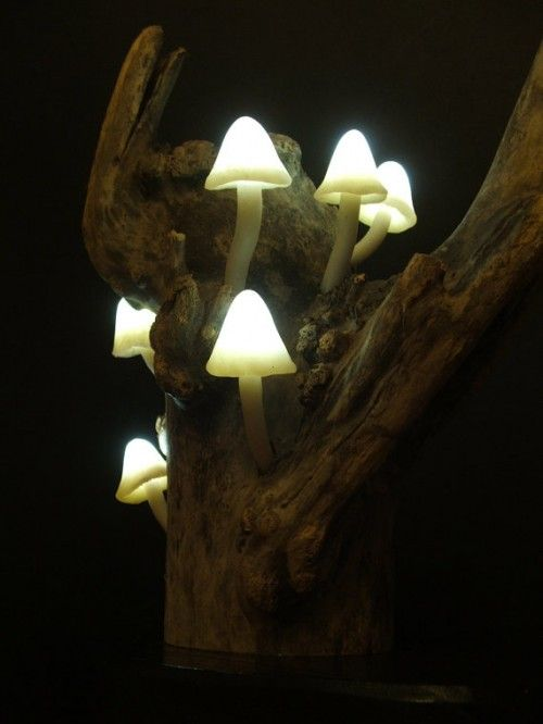 Inspiration Lamp Mushroom Forest Atmosphere brings the atmosphere of your room into the jungle at night, this is an intimate Handcrafted to bring the magical atmosphere to your home by using a translucent white shrooms contain energy efficient Led and supported by two standard AA batteries and a small control on / off switch. Attached to a piece of driftwood their unusual make a real statement piece for your home.