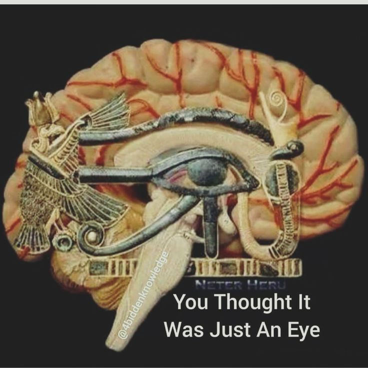 57 best the 3rd eye 6th chakra pineal gland seat of