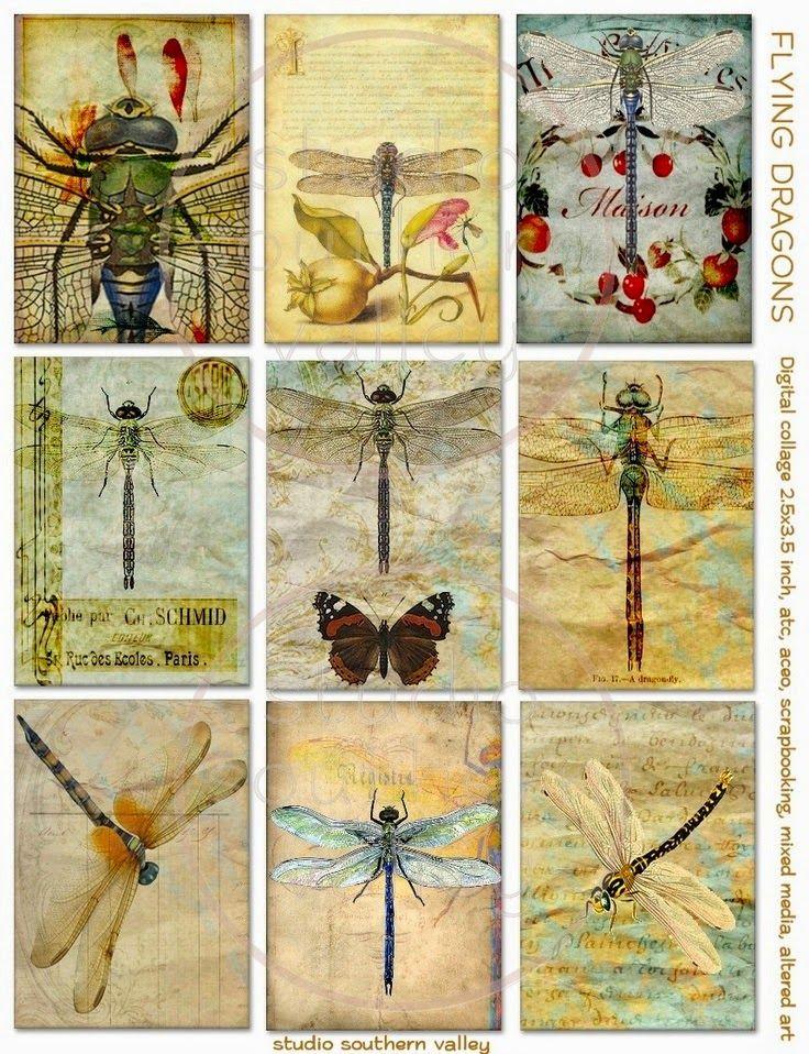 Imprimolandia: Etiquetas vintage de libélulas  Dragonfly vintage ...