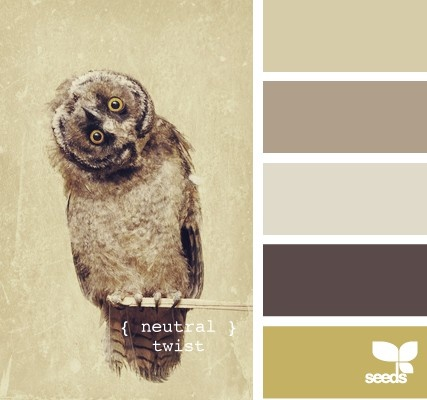 Oh, you want to paint your house? How about the same color palette as a FUCKING TERRIFYING OWL, HOLY SHIT!