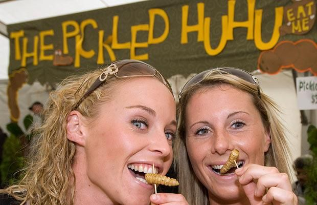 Hokitika Wild Foods Festival located on the West Coast of New Zealand's South Island