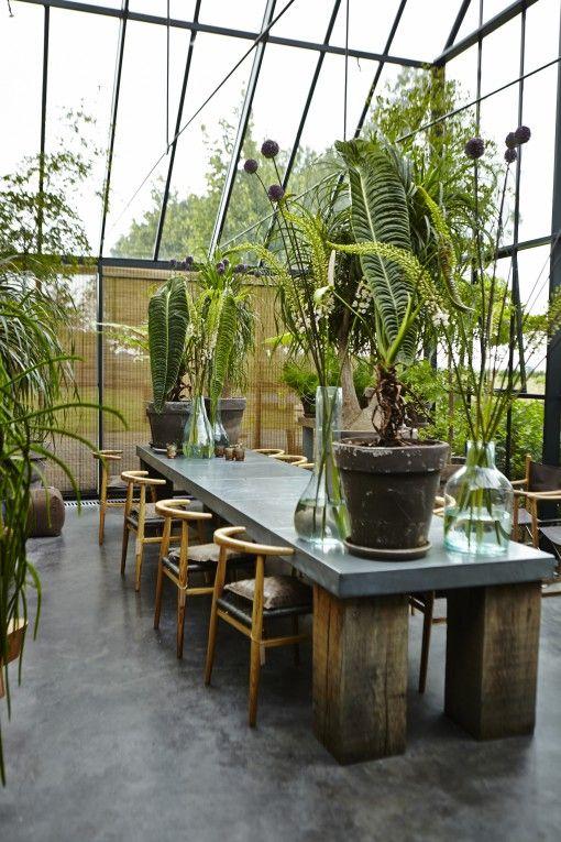 Serre ou salle à manger ? La table aux massifs pieds en bois est aussi impressionnante que les plantes et la hauteur de la verrière.