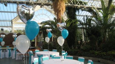 tropical teal balloons - Google Search