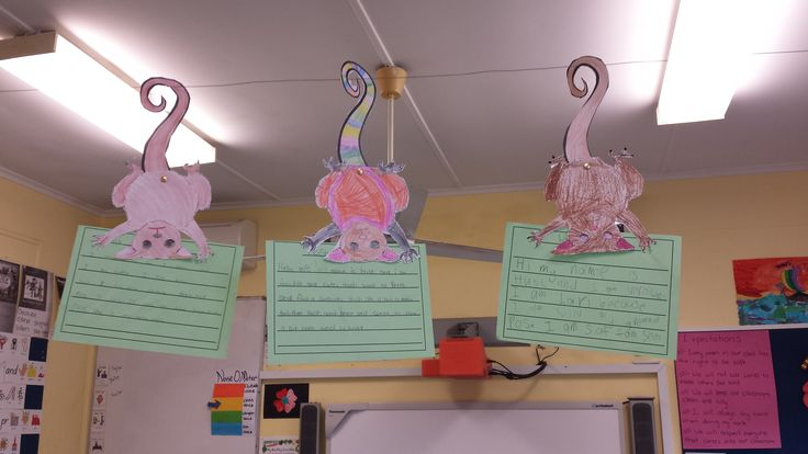 Hush from Possum Magic. Finding a way to display writing samples the students made their ringtail possums do the work. Hanging by their movable tails (attached with a split pin) the possums hold the writing for everyone to see.