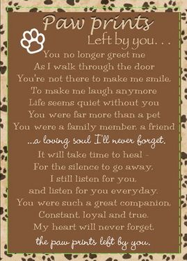 This is a real card (not an e-card) shared from Sendcere.  Beautiful Sympathy card for a friend who's lost their fur baby.