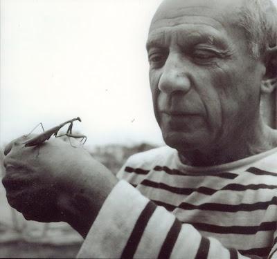 Picasso + mantis