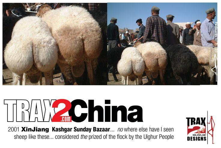 "Kashgar+Sunday+Bazaar+China+(from+<a+href=""http://trax2australia.com/picture/kashgar-01/category/130-trax2_international_postcards"">Trax2+Australia</a>)"
