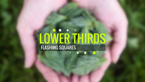 Download here http://videohive.net/item/lower-thirds-flashing-squares/12580690?ref=TanyaMS