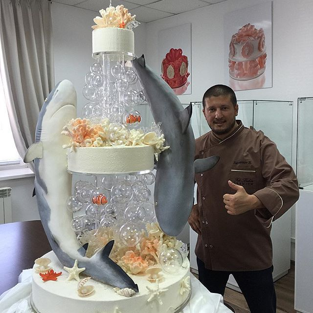 cake for dad 171 best images about shark cakes on 2234