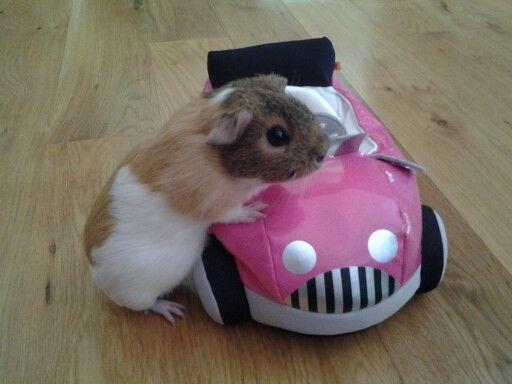 """""""Check out my sweet ride yo!"""""""
