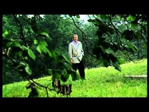 Budu volat mám tě rád - Radoslav Brzobohatý