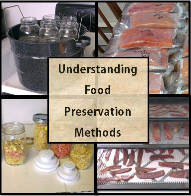Food preservation techniques and methods
