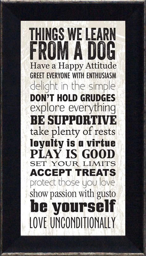Artistic Reflections Things We Learn From a Dog Framed Textual Art & Reviews | Wayfair