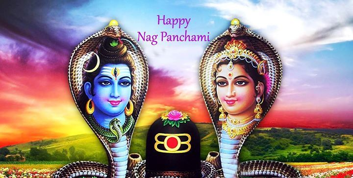 Nag Panchami 2016 - TemplePurohit.com  Panchami Tithi Begins = 04:04 on 7/Aug/2016 Panchami Tithi Ends = 05:58 on 8/Aug/2016  #NagPanchami : http://ift.tt/2b04a9J  Shukla Paksha Panchami during Sawan month is observed as Nag Panchami. Usually Nag Panchami day falls two days after Hariyali Teej. Currently Nag Panchami falls in the month of July and August in English calendar. Women worship Nag Devta and offer milk to snakes on this day. Women also pray for the wellness of their brothers and…