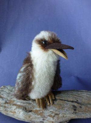 Kooka - a miniature kookaburra