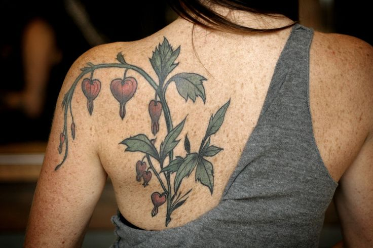 Healed bleeding heart tattoo- existing design, reworked by Alice Carrier.