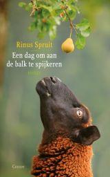 Rinus Spruit - Een dag om aan een balk te spijkeren.