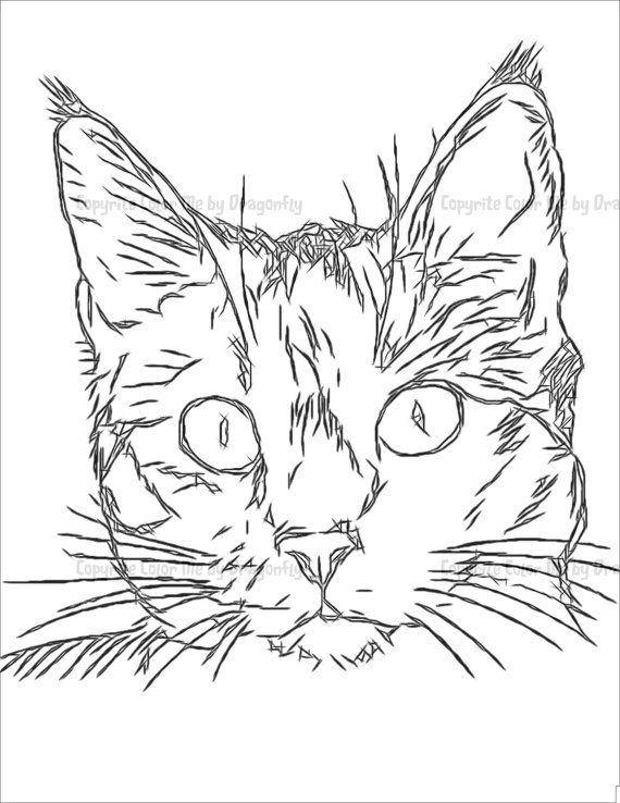 84 best Coloring Pages images on Pinterest Illustrations, Clip art - best of coloring pages black cat