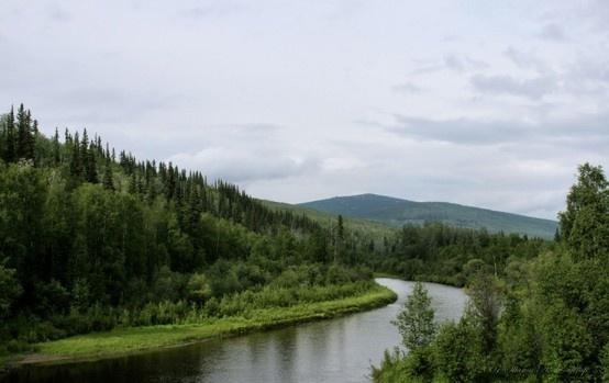 Tanana River, Fairbanks   Alaska   Pinterest   The o'jays ...