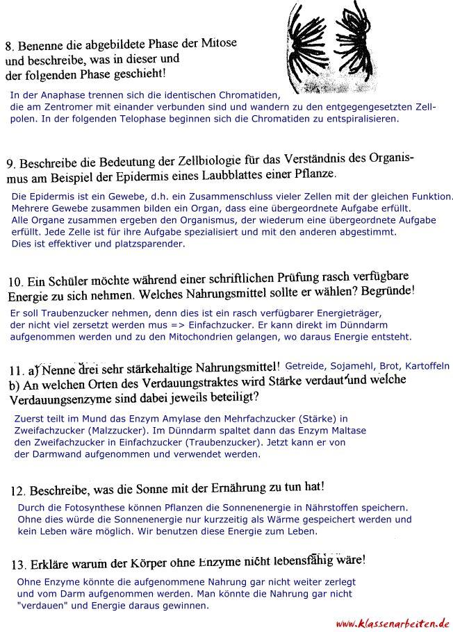 Ungewöhnlich Abschnitt 8 1 Energie Und Leben Arbeitsblatt Antworten ...