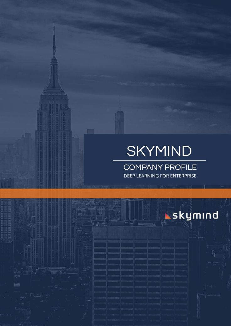 Company Profile  Skymind Company Profile