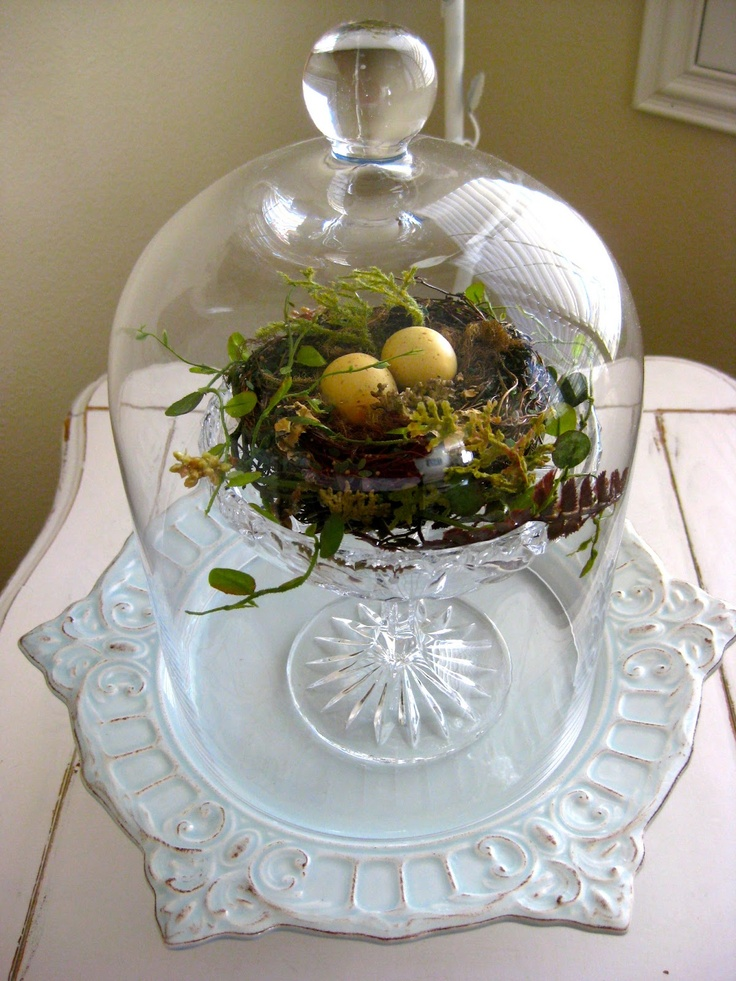 Best cloche glass jar ideas images on pinterest