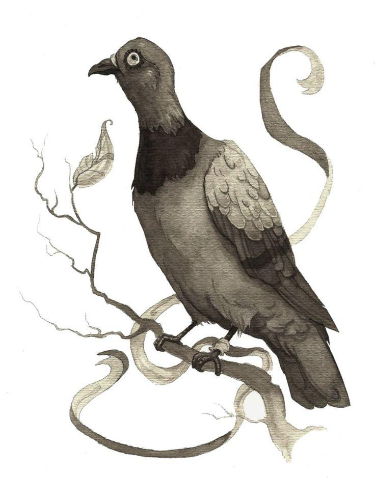 Love this pigeon illustration.