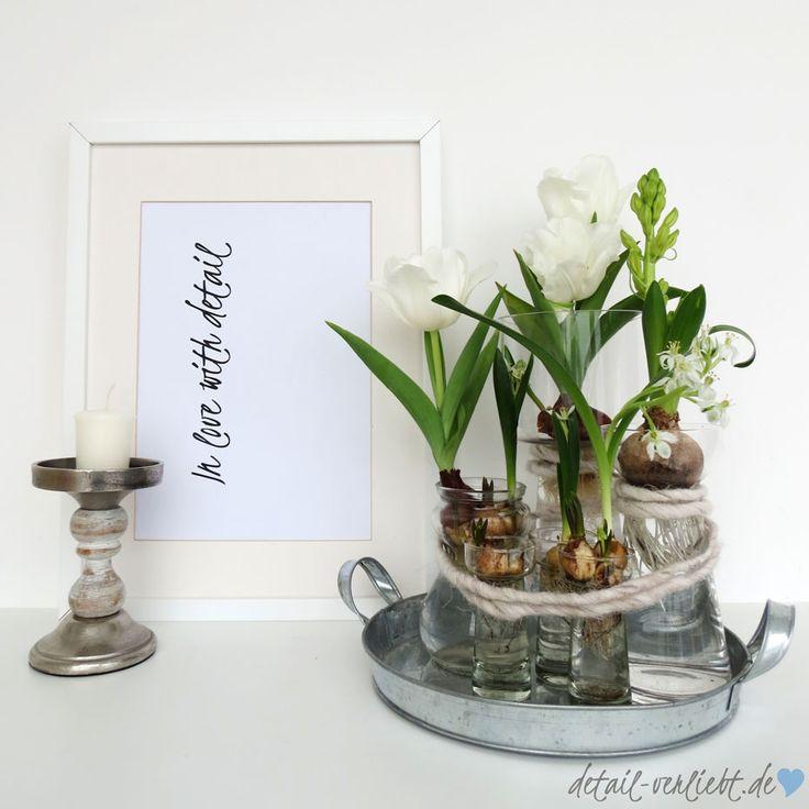 die besten 25 blumenzwiebeln pflanzen ideen auf pinterest gl hbirnen fr hlingszwiebeln und. Black Bedroom Furniture Sets. Home Design Ideas