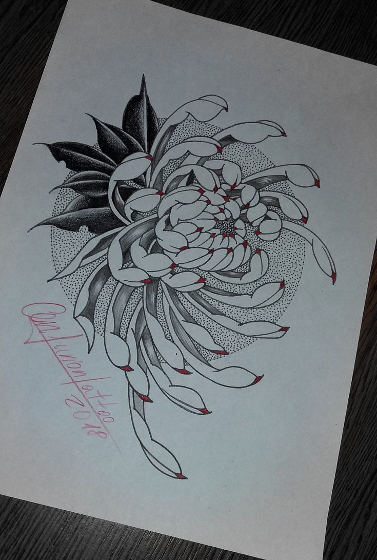 Chrysanthemum Flower Tattoo Drawing Chrysanthemum Drawing Flower Tattoo Traditional Japanese Tattoo Sleeve Japanese Tattoo Japanese Flower Tattoo