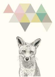 Briki Vroom Vroom `Kaart Wolf`