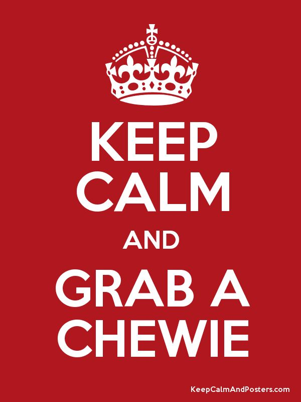 Check out http://funandfunction.com/calm-and-focus/chewies.html for all your Chewie needs