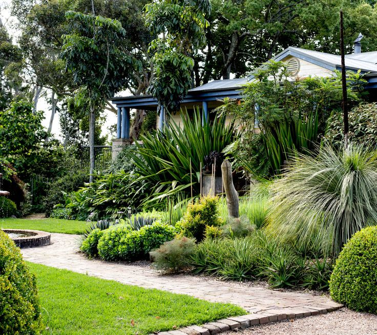 Australian garden designer Michael Cooke's house entry is framed by lush mixed plantings of Gymea lily (Doryanthes excelsa), grass trees (Xanthorrhoea spp), massed aloes (Aloe spp.) and more. Photographed by Daniel Shipp. via The Design Files
