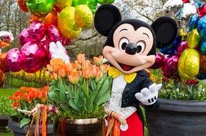 Disneyland Paris Tulip: Disney Art, 1St Birthday, Disney Land, Disneyland Paris, Paris Tulip, 20Th Birthday, Disney Characters, Birthday Ideas
