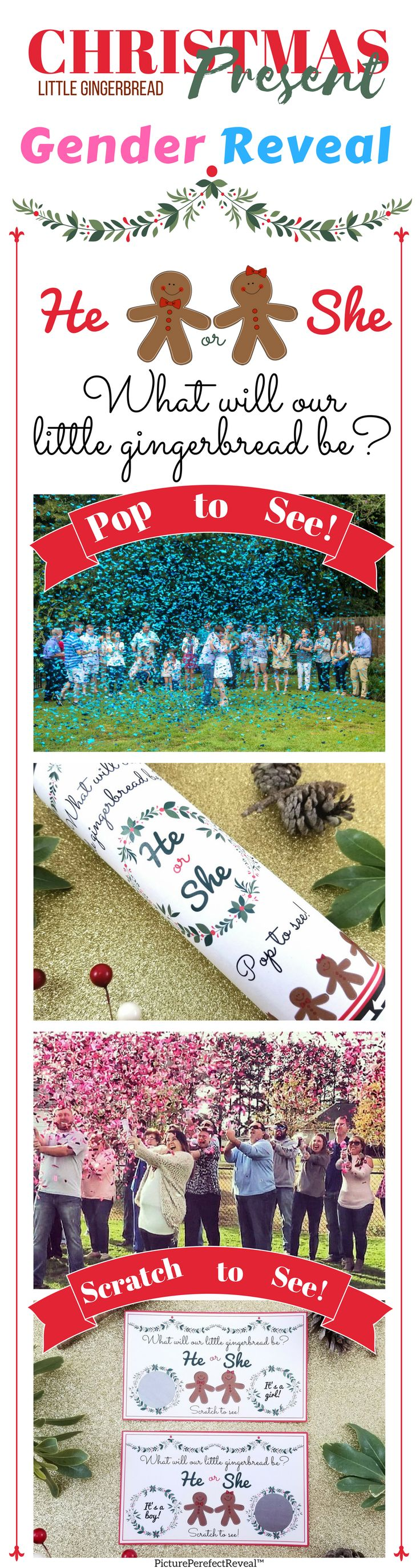 #GenderReveal #genderreveal #boyorgirl Christmas Gender Reveal Ideas #PicturePerfectReveal PicturePerfectReveal™ Confett Cannon Confetti Popper