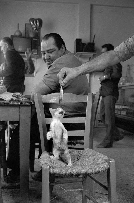 © Josef Koudelka - Peloponnese. 1982.