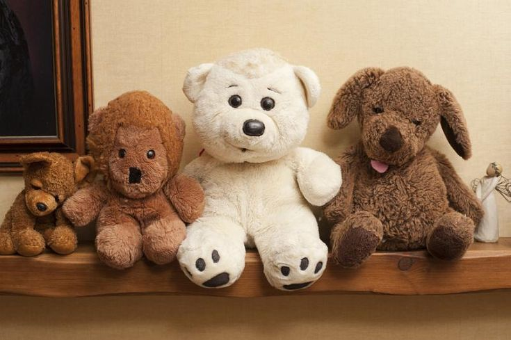 Row of three different plush teddy bear toys - free stock photo from www.freeimages.co.uk