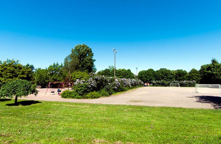 Pajalahden puistossa on myös pelikenttä, joka jäädytetään luistinradaksi suosiollisina talvina [Hemmo Rättyä]