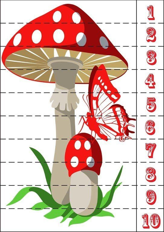 разрезные картинки по теме грибы ягоды меня