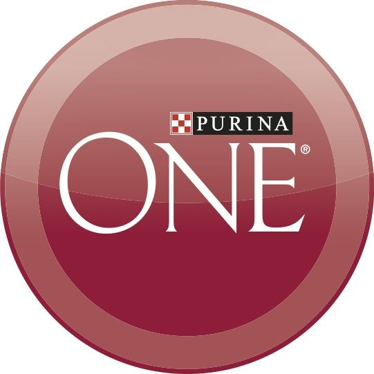 I received my first bag of Purina One dog food complimentary to do the 28-day challenge and I can tell a difference in my dog's coat already! I can tell it's regulating them a bit too which is awesome #ONEDifference