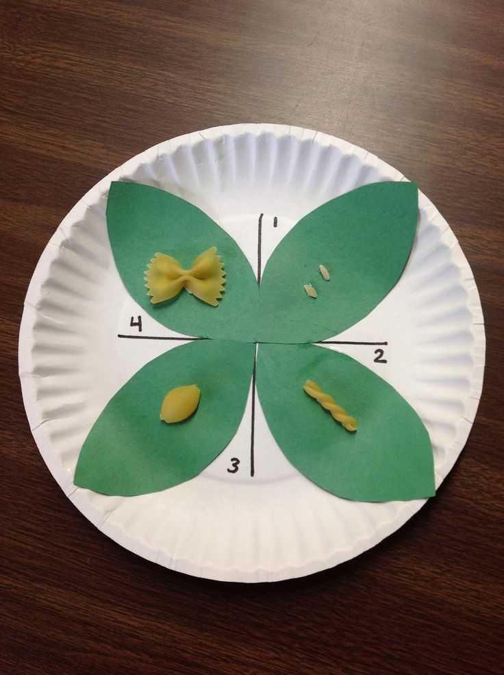 Life cycle craft idea:  4 leaves to form the shape of a butterfly + pasta for each stage in the butterfly life cycle