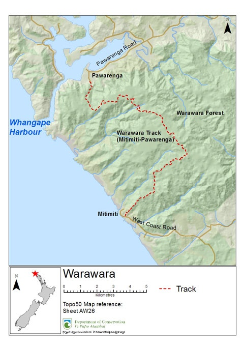 Track through the Warawara Forest