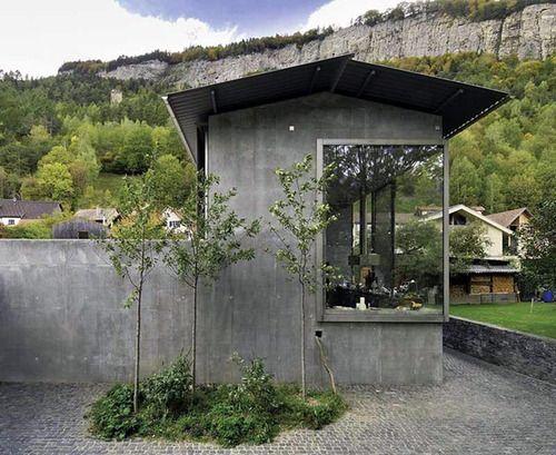 対極的なモノを添えることでの互いの強調。 でも、あくまで建築を優先的に考えてる場合。 ↓ 葉張りの少ない植物。 か細い幹。