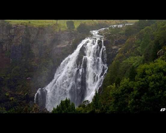 Waratah Tasmania waterfalls
