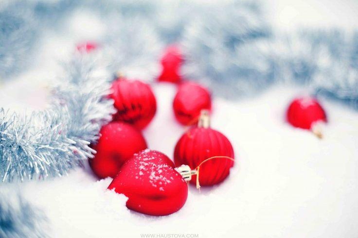 Букеты из всего на свете   Свадьбы зимой   Свадьбы в красном цвете   24 Фото идеи