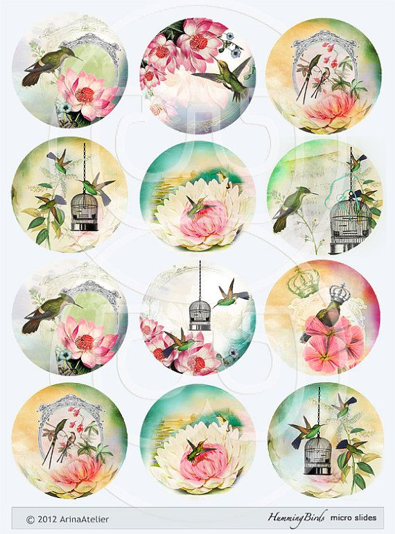 Digital MicroSlides Hummingbirds Vintage by arinaatelierDigital, $4.50