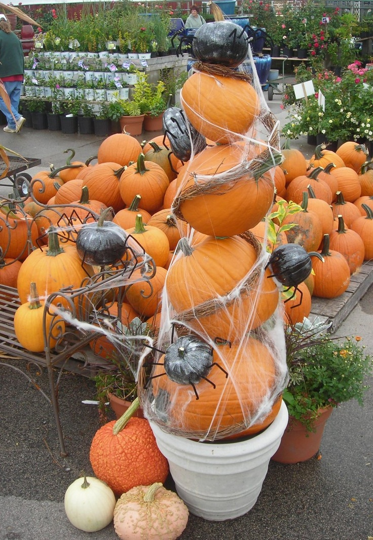 Pumpkin topiary with grapevine and gourds painted to look like spiders : decorated gourds ideas - www.pureclipart.com