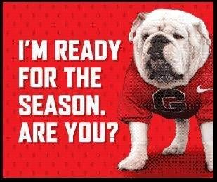 1000 Images About Ga Bulldogs I Love My Dawgs On