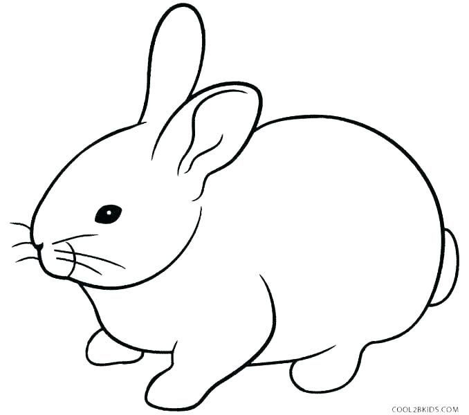 Coloring Page Bunny Printable Coloring Pages Rabbits Kids Coloring