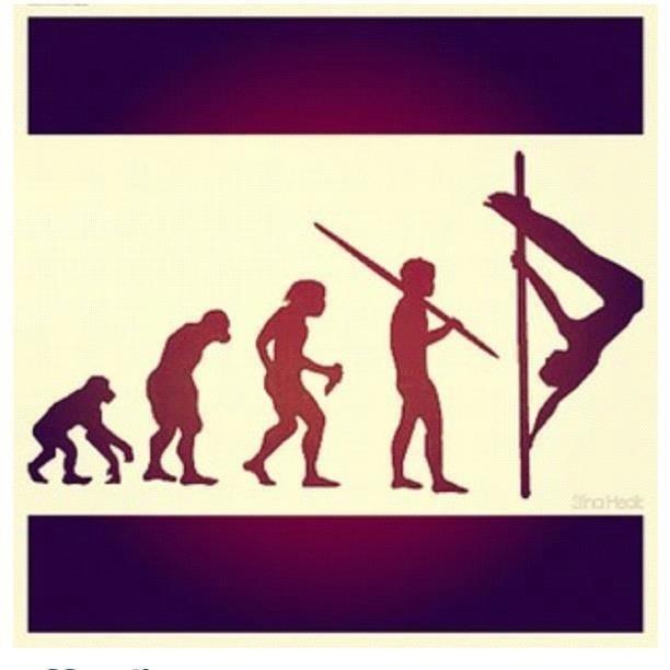 Evolution for poledancer